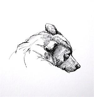 Dog Sketch II