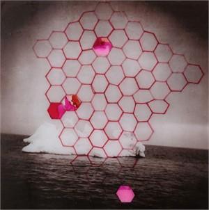 Pink Iceberg, 2018