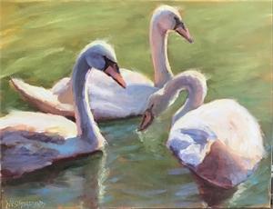 Swan Beauty, 2019