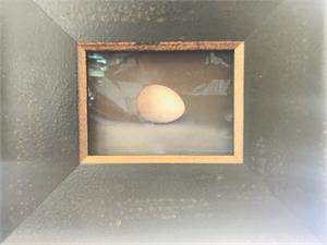 Quail Egg 15 (2/5), 2019