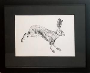 Running Hare, 2020