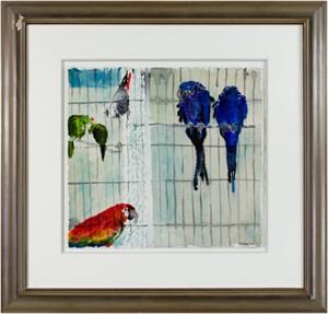 Parrots, 1966