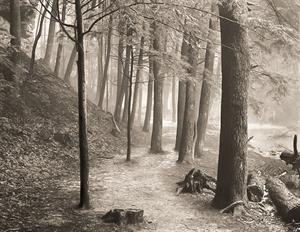 (#021) Passage (3/8) by Frank Hunter