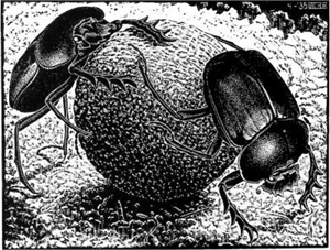 Scarabs, 1935