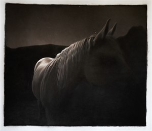 Horse in Moonlight