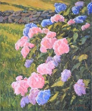 Hydrangeas, Pink & Blue