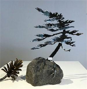 Windswept Pine  3395