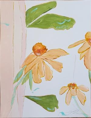 Echinacea Garden IV