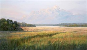Distant Marsh