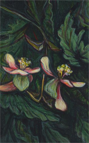 Study for Begonias, 2015-2016