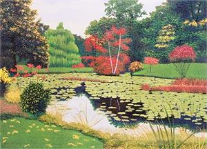 October Paramecium Pond  (12/100)