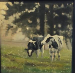 Holsteins In Pasture