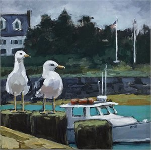 Two gulls observing
