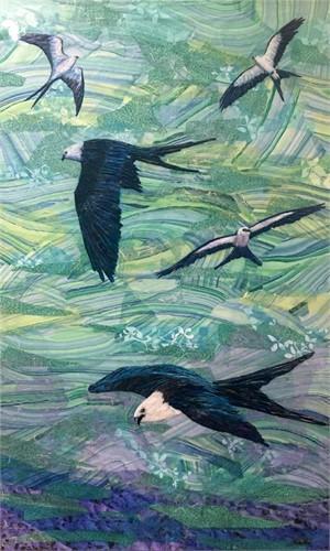Swallow-Tailed Kites, 2018