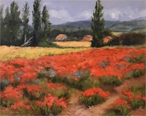 Valley Fields, 2020