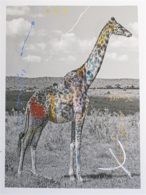 Giraffa (/12), 2014
