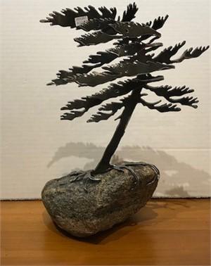 Dancing Pine, MA000683