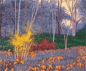 Massachusetts Autumn  (52/100)