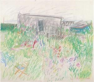 Posies (Dear Isle Studio), 1968