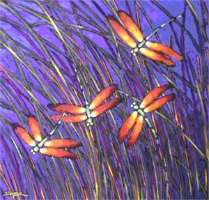 Multiple Dragonflies