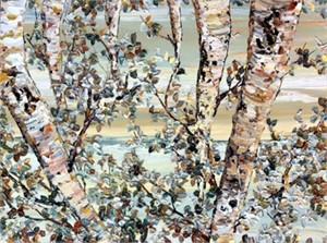 Birch - Grey Shades 172862