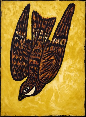 Chicken Hawk (1/24), 2014-15