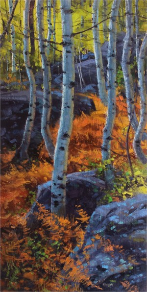 Aspens Rocks & Ferns