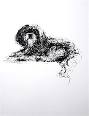 Dog Sketch III