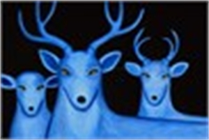Night Sky/Three Blue Deer - LARGE Framed $3700 (5/10)