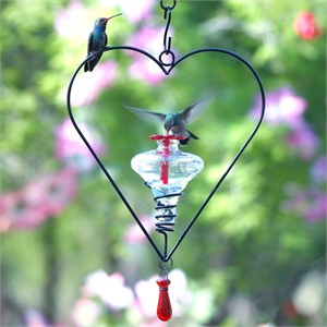Hummingbird Feeder - Sweetheart Assorted Glass Colors