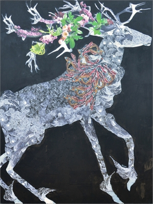Stag Series