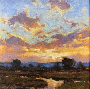 Western Sky at Evening by Michael J Lynch