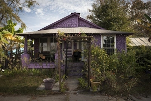 Late Harvest: Purple House, Ludowici, GA by Forest McMullin