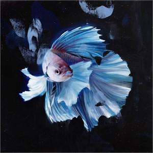 Blue Betta