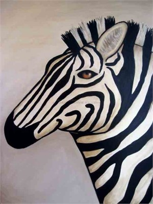 "WHITE ZEBRA - limited edition giclee on canvas 40""x30"""