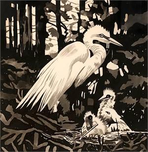 Egrets Nesting, 2008