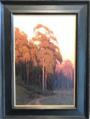 Eucalyptus Moonrise, 3/1/18