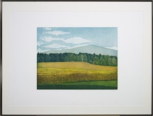 Untitled (field, hills trees), 1981