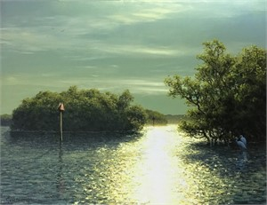 Light Through the Mangroves (The Florida Waterways Series)