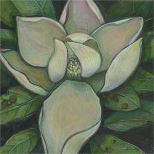 Study for Magnolia No 2
