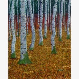 Afternoon Birches
