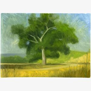 Briones (landscape with oak)