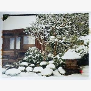 Winter's Softeness