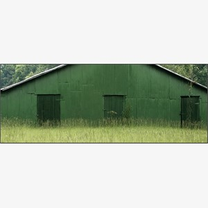 Green Warehouse, Hale County, AL