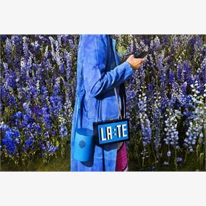 Dior No. 3 (LA:TE)