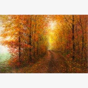 A Misty Autumn Road (enhanced AP)