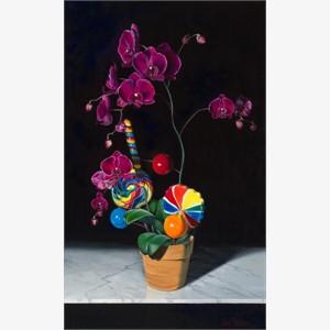 Orchidpop, 2011