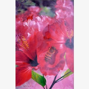 Hibiscus Lovers