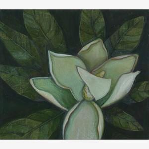 Study for Magnolia No. 3