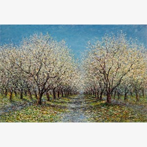 The Almond Grove (AP), 2016